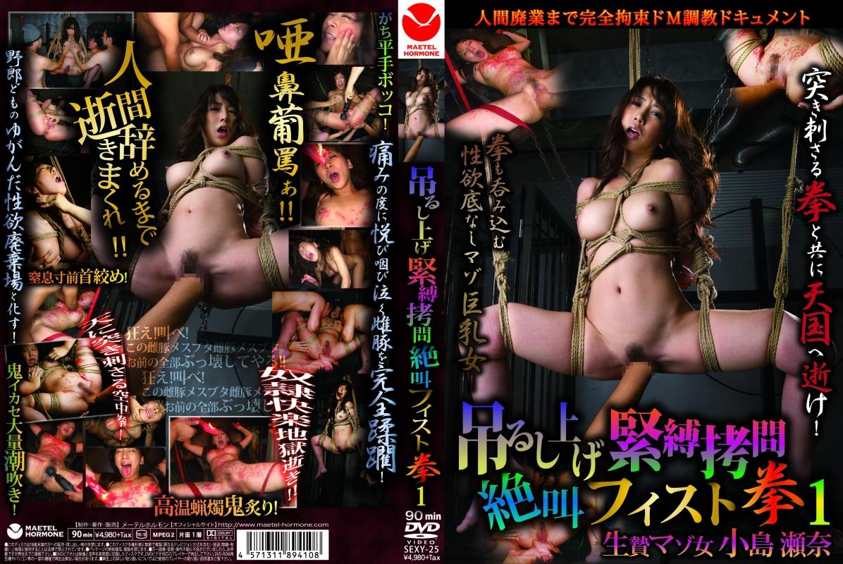 [SEXY-25] 吊るし上げ緊縛拷問絶叫フィスト拳 小島瀬奈 SM 縛り 90分