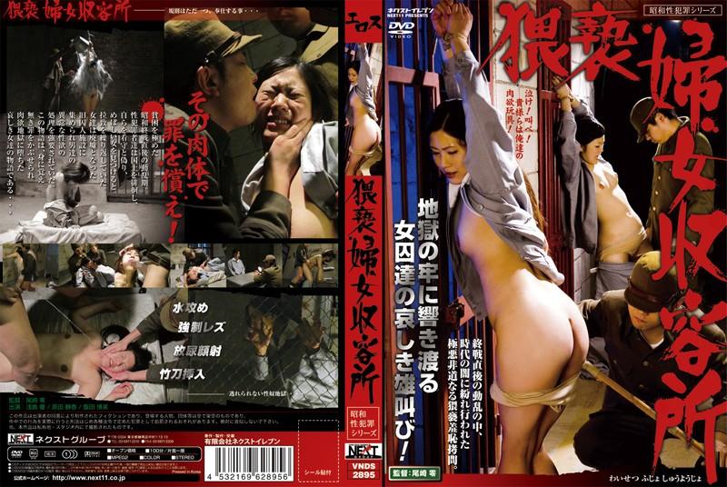 [VNDS-2895] 昭和性犯罪シリーズ 猥褻婦女収容所 監禁・拘束 Rape