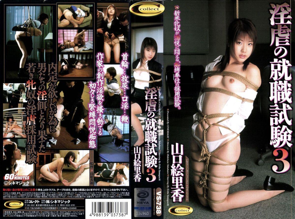 [VS-738] 淫虐の就職試験3    【VHS】 60分 シネマジック 2004/01/23