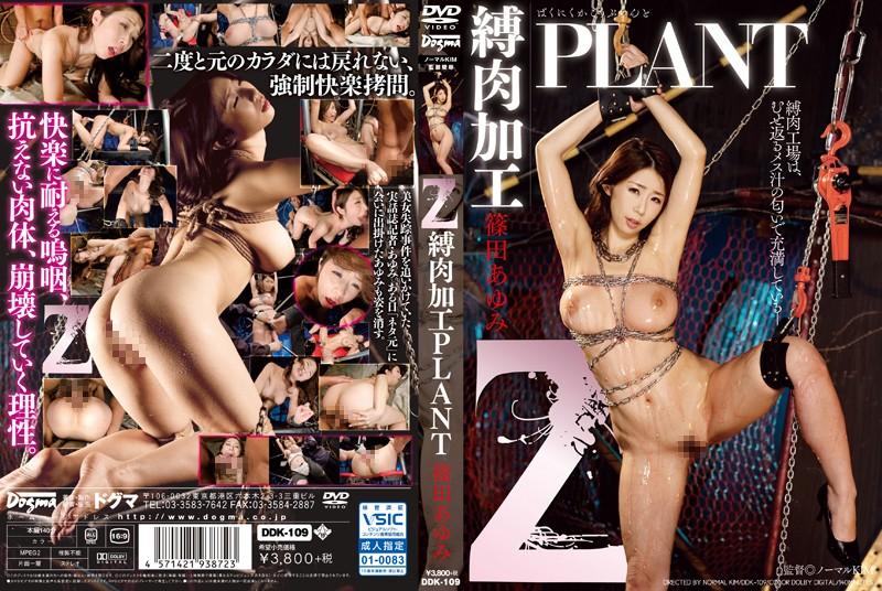 [DDK-109] Z 縛肉加工PLANT 篠田あゆみ Restraint 巨乳 拘束 Shinoda Ayumi