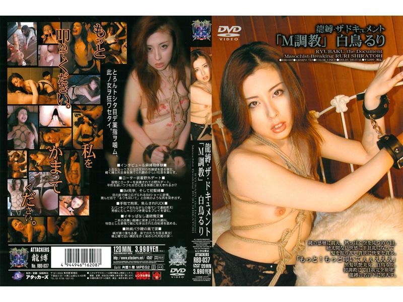 [RBD-037] ルリスワン Shiratori Ruri「TortoraのM」・ドラゴン・テヨン文書テッド Bondage  拷問