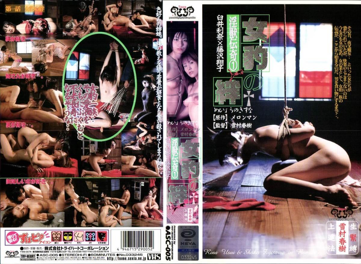 [ASC-005] 淫獣伝奇 0 女豹の絆    【VHS】 モデル・お姉さん風 3P・4P 素人 2003/10/24 トライハートコーポレーション