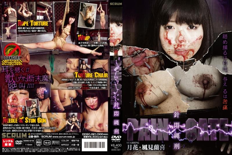 [DDSC-021] PAIN GATE 針悶縄刑 風見蘭喜 SM