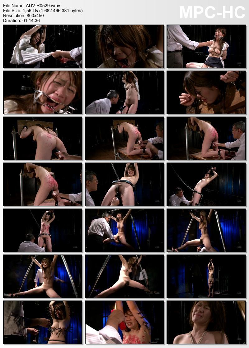 [ADV-R0529] Urata Rumiko 肉魔のテリトリー 4 (レンタル版) その他SM SM 2010/08/12 Art Video