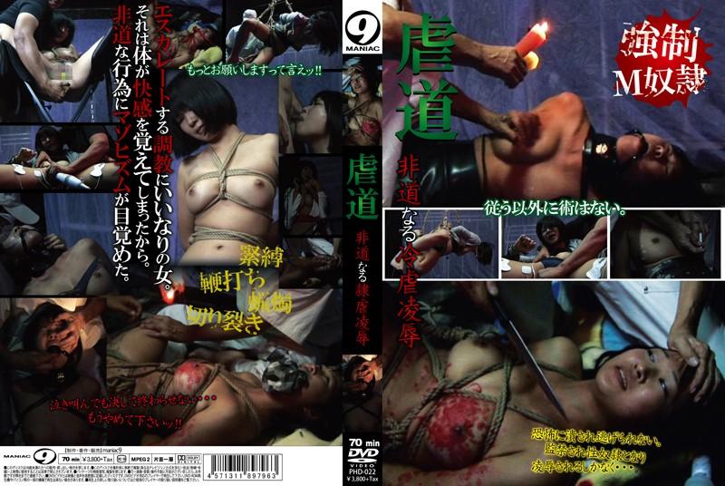 [PHD-022] 虐道 非道なる冷虐凌辱 スパンキング・鞭打ち マニア9 SM Maniac (Mercury)