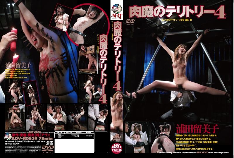 [ADV-R0529] 肉魔のテリトリー 4 (レンタル版) その他SM SM 2010/08/12