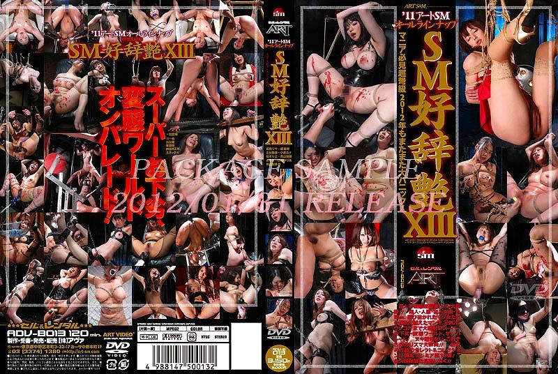 [ADVB-013] '00アート00オールラインナップ 00好辞艶 00 2012/01/31 ADV-B013