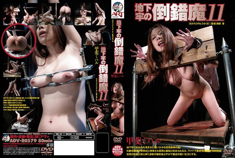 [ADV-R0579] 地下牢の倒錯魔 11 その他SM 森田晋 SM 2011/06/20