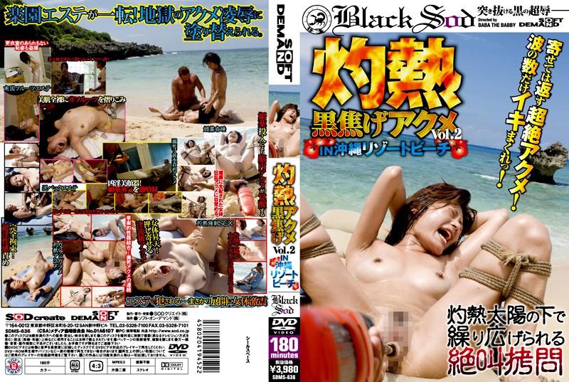 [SDMS-636] 灼熱黒焦げアクメ 111.1 11沖縄リゾートビーチ 2009/04/23 Other Humiliation BLACK SOD 180分