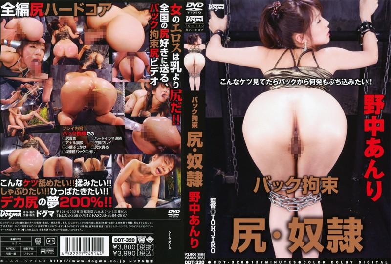 [DDT-320] Nonaka Anri (野中あんり) バック拘束 尻・奴隷 【アウトレット】 Dogma