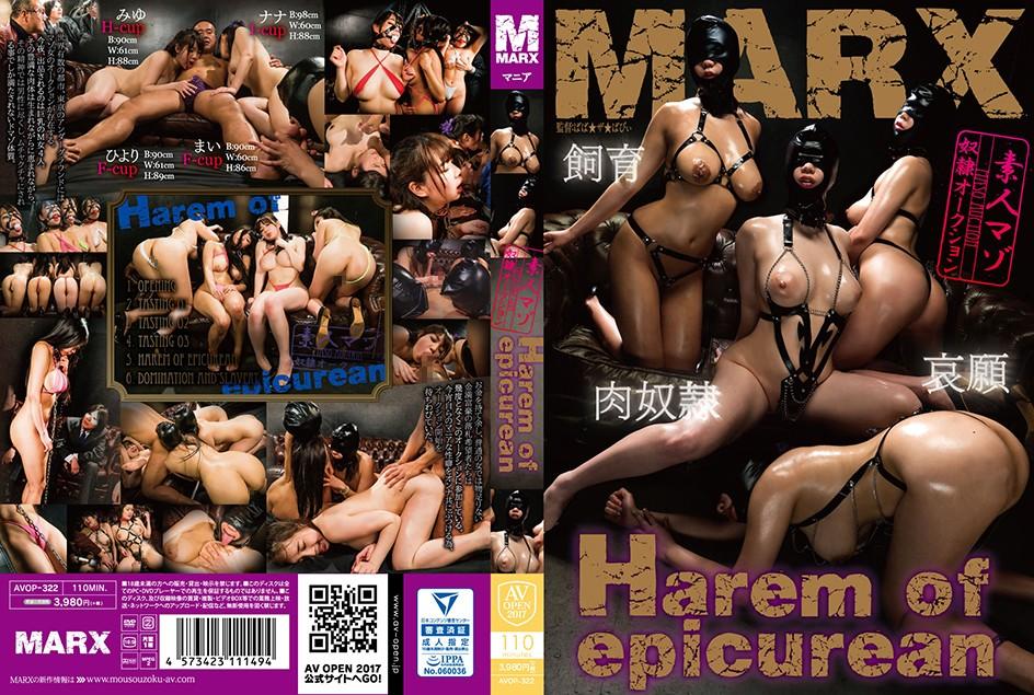 [AVOP-322] Harem of epicurean ~素人マゾ奴隷オークション~ 2017/09/01 ばば★ザ★ばびぃ