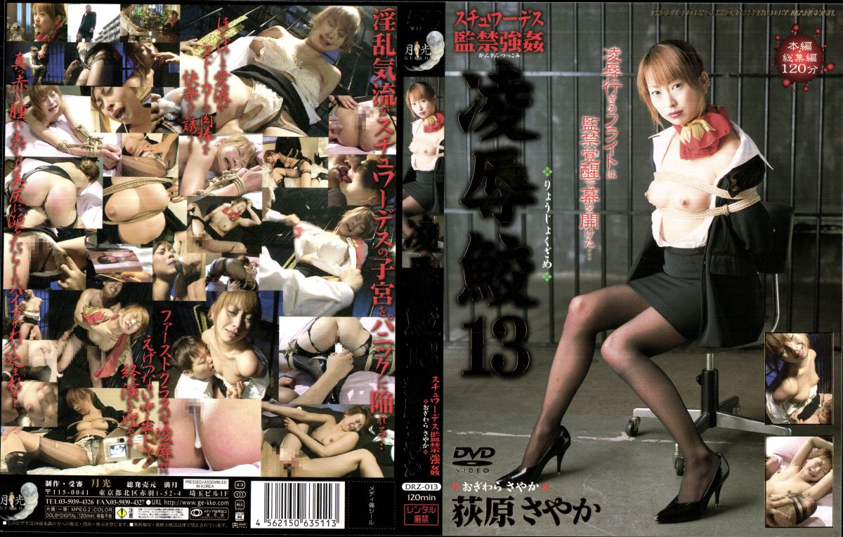 [DRZ-013] Hagiwara Sayaka 凌辱鮫 13 荻原さやか  Costume その他SM Deep Throating Planning フェラ・手コキ