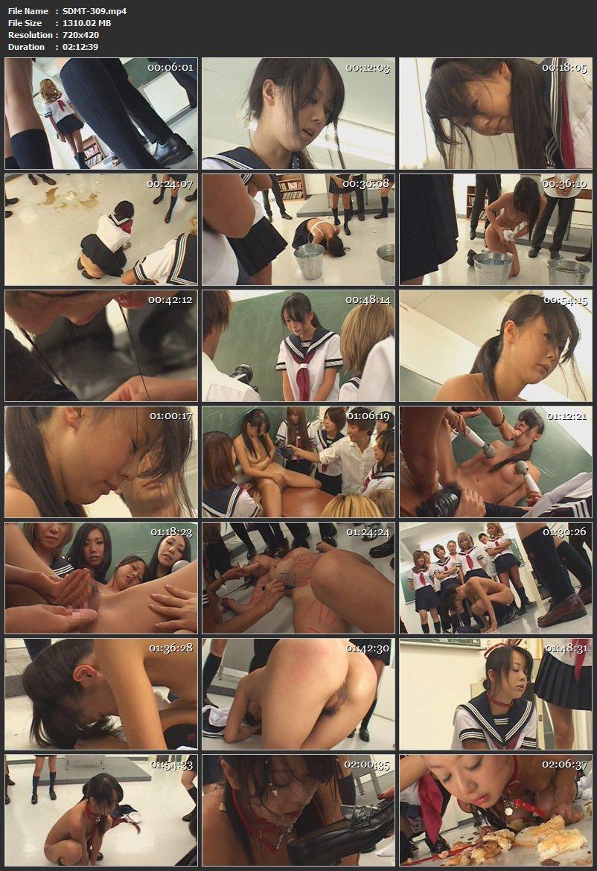 [SDMT-309] Hayama Junko 集団いじめ学級 じゅんこ D.LUFFY 130分 2011/03/18