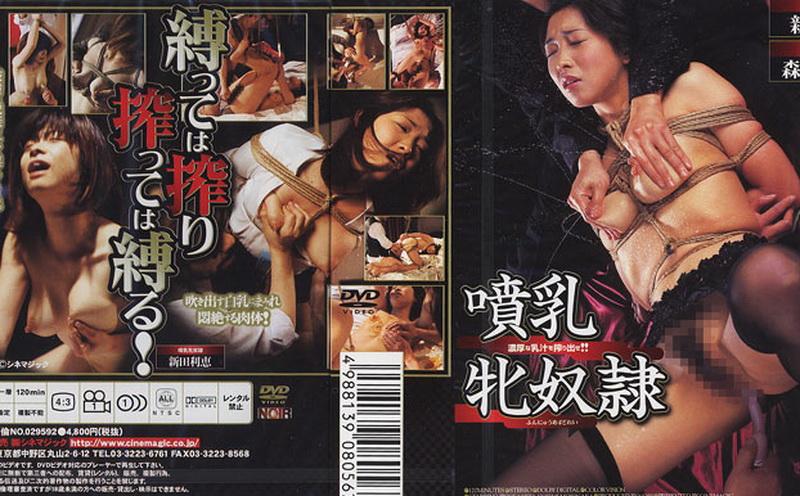 [DD-056] 新田利恵, 森中智恵美 噴乳牝奴隷 SM Aunt 人妻・熟女