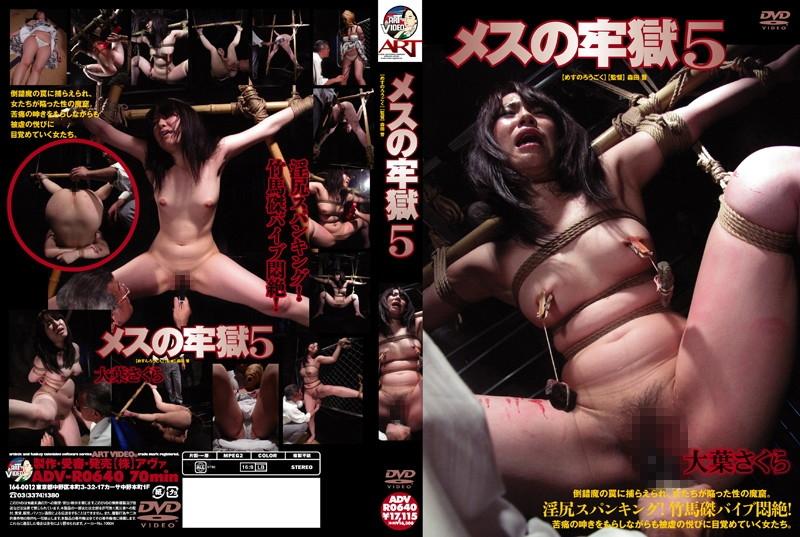 [ADV-R0640] メスの牢獄 5ADV-R0640 スパンキング・鞭打ち 森田晋
