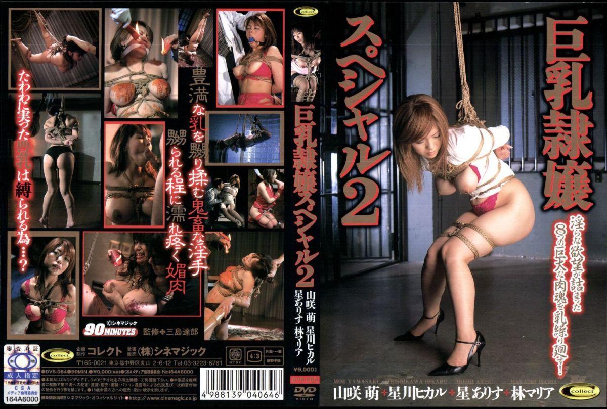 [VS-064] 巨乳隷嬢スペシャル 2 その他SM 総集編 コレクト Tits