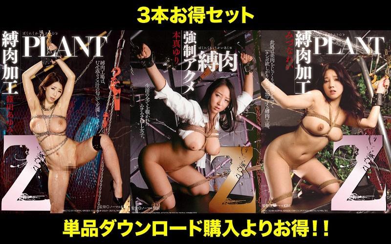 [STDDT-076] 【お得セット】Homma Yuri まとめて抜ける!! Z 縛肉 シリーズ Ayumi Shinoda Rape ドグマ 2021-05-25